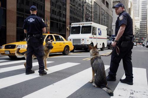 Фото: Michael Nagle/Getty Images