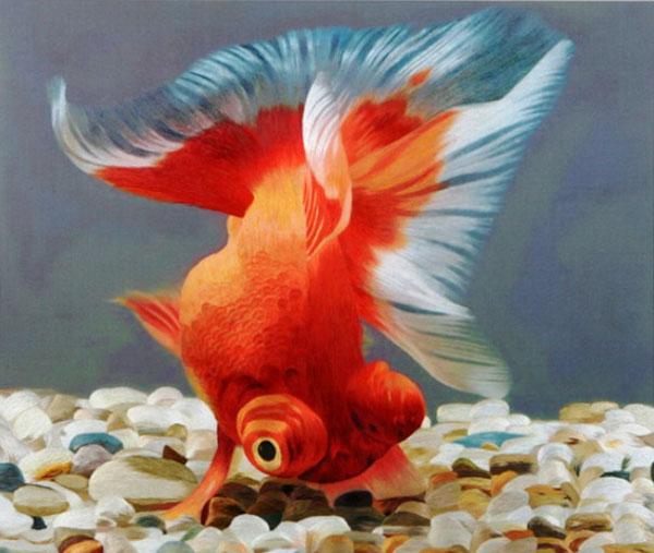 Золотая рыбка. Фото: liveinternet.ru