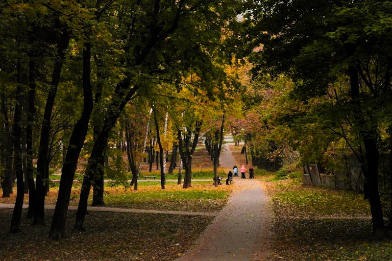 Золотая осень 2011. Фото: Владимир Бородин/The Epoch Times Украина