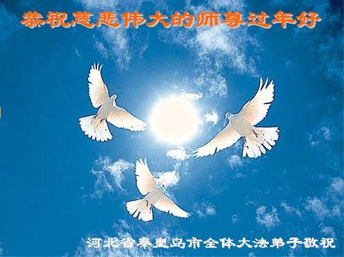 Поздоровлення від послідовників «Фалуньгун» м. Чинхуандао провінції Хебей. Фото з minghui.org