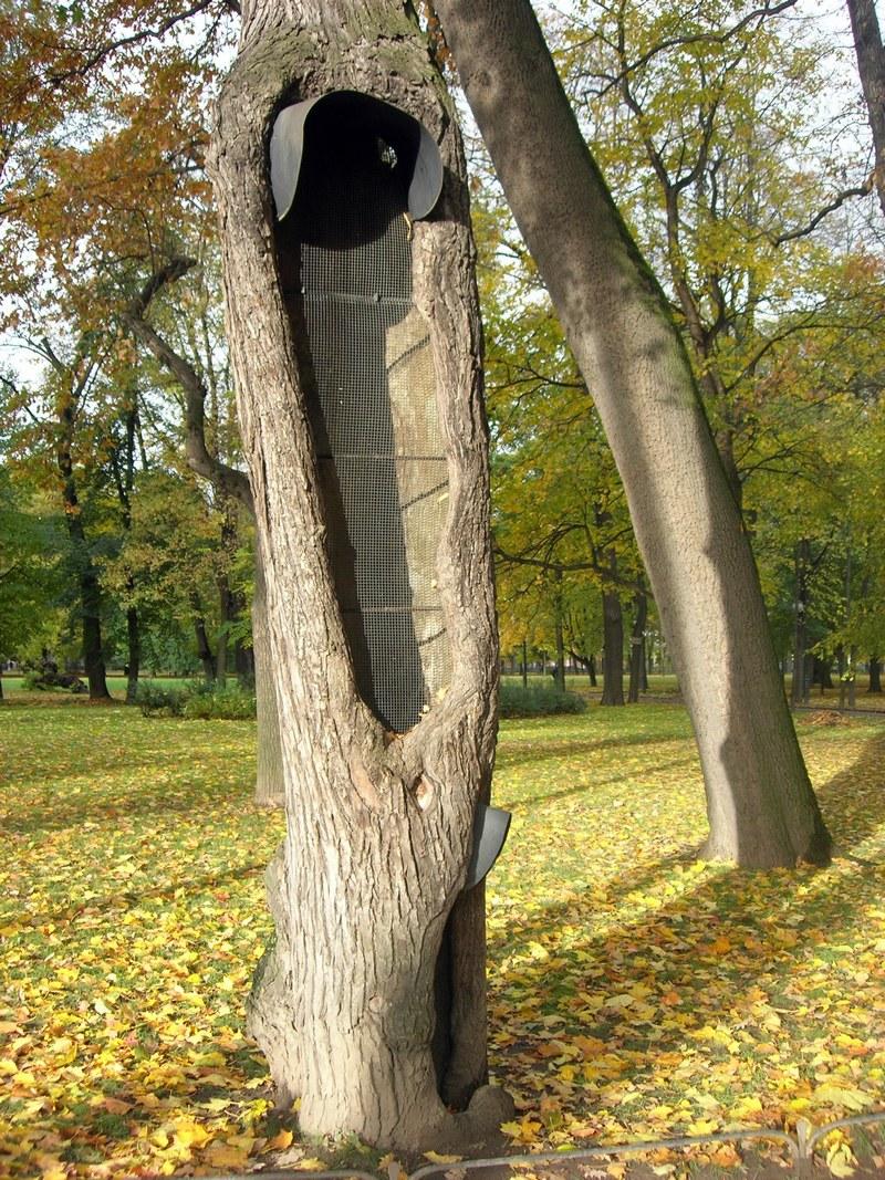 Реставрация деревьев. Фото: Алла Лавриненко/The Epoch Times Украина