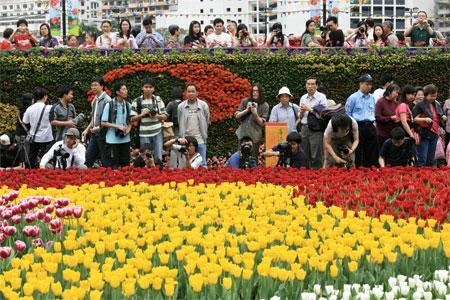 Разнообразные тюльпаны на ежегодной Гонконгской выставке цветов. Фото: У Лянью/Великая Эпоха
