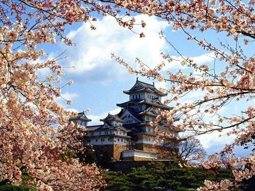 Замок Кинки Химеджи (kinki himeji castle) в Японии.