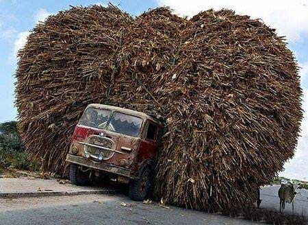 Перевозити вантажі можна різними способами. Фото з aboluowang.com