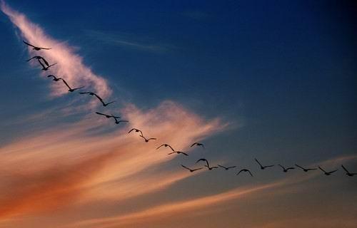 Світ, відбитий в об'єктиві. Фото з aboluowang.com