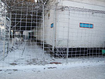Киргизия: Число заключённых