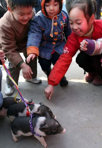 Китай. Провинция Гуандун. Чжухай. Дети играют с поросятами. Фото: STR/AFP