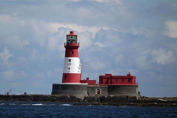 Природа островів Фарн-Айлендс. Фото: Dan Kitwood/Getty Images