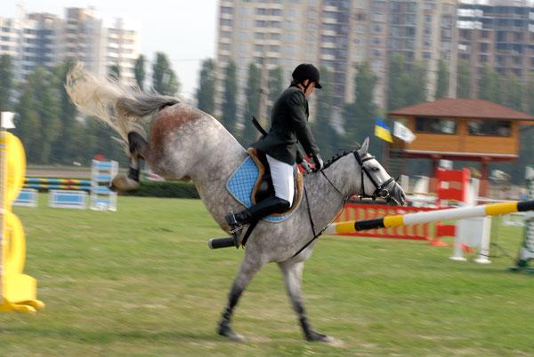 Чемпіонат України з конкуру 2009 у Києві. Фото: Володимир Бородін/The Epoch Times