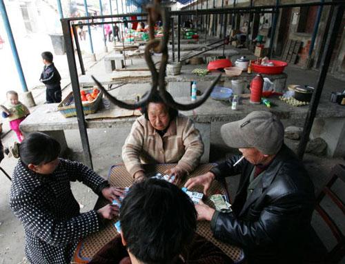 21 березня, 2007 р. Місто Ухань пров. Хубей, жителі грають у Махцзон. Фото: China Photos/Getty Images