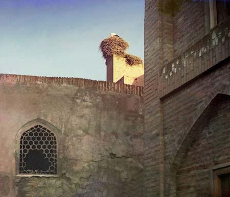 Лелека: етюд у Бухарі, 1911 року. Лелека, традиційний символ удачі серед тюркських народів, сидить у гнізді на верху палацової стіни в Бухарі в Середній Азії. Фото: Прокудін-Горянський/ Бібліотека Конгресу