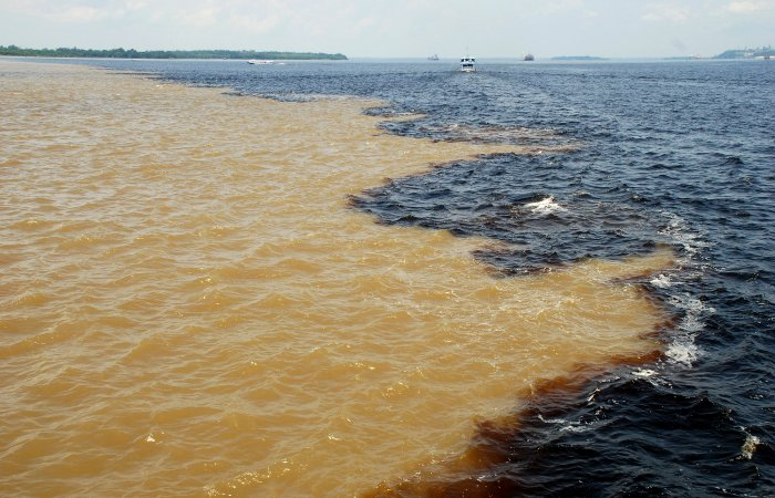 Слияние Риу-Негру и Амазонки, самой длинной реки в мире. Фото: LecomteB/fr.wikipedia.org