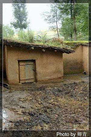 Внутренний двор используется для хранения навоза. Фото: Цин Цин/Великая Эпоха