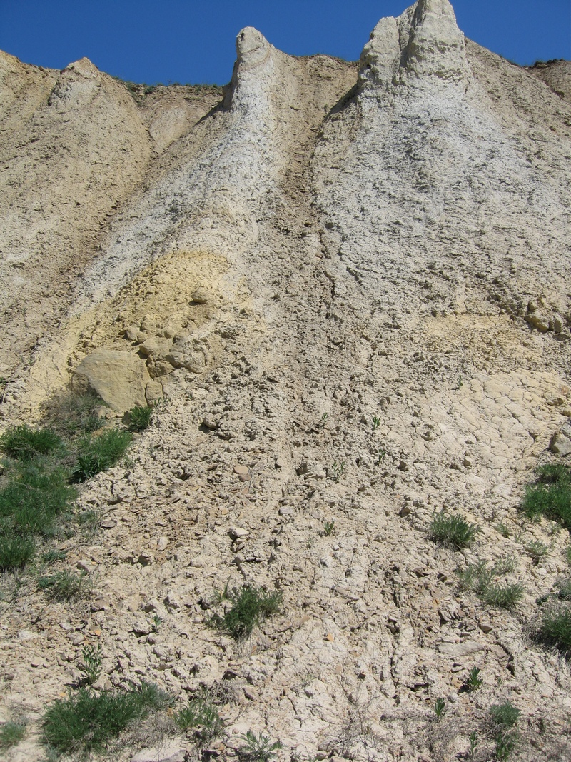«Седьмое чудо Украины» ― Каньон в Алексеево-Дружковке, Донецкой области, где сохранились окаменевшие деревья возрастом 250 млн лет. Фото: Милостнова Росина/ The Epoch Times Украина