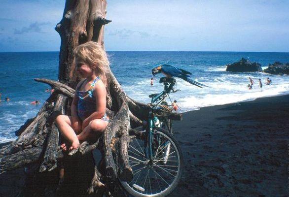 Black Sand Beach. Фото: life.pravda.com.ua