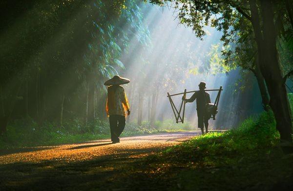Удивительный мир вокруг нас. Фото: aboluowang.com