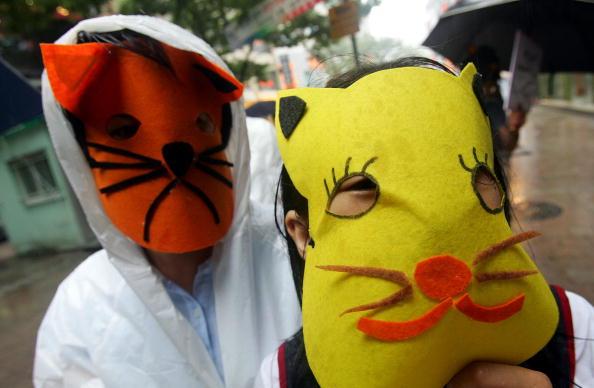 Протест проти вживання собачатіни. Сеул, Південна Корея.14 липня 2009г.Фото: Chung Sung-Jun/Getty Images