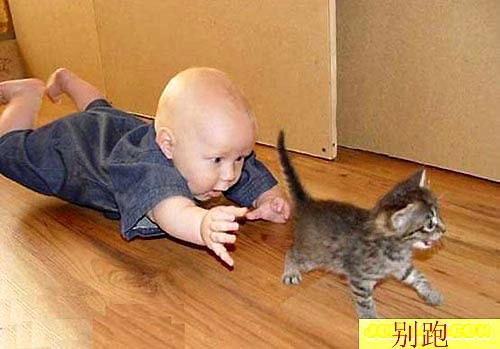 Малыши исследуют мир. Фото с secretchina.com