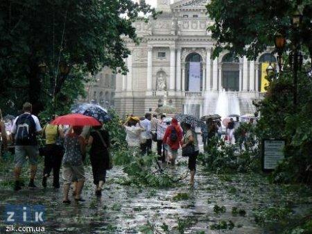 З будинків зірвало покрівлі, викорчувало чимало дерев, стовпів та рекламних щитів, потрощило автомобілі. Фото с sfw.datasvit.net