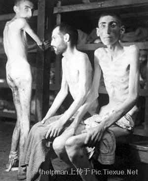 Трупы казнённых заключённых концлагеря Нордхаузен. Этот лагерь был подведомственен Гестапо. На фото показаны меньше половины всего числа казнённых. Большинство из них умерло от голода или были застрелены.