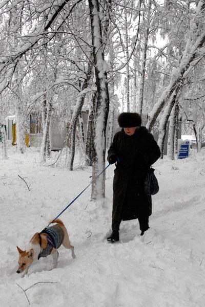 Київ засипало снігом.Фото: Володимир Бородін/The Epoch Times