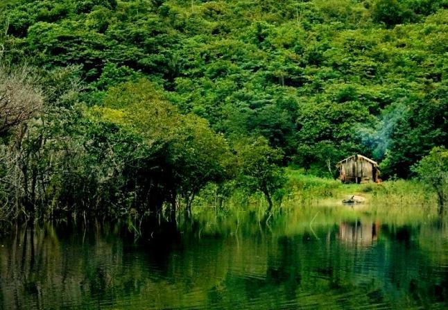 Хижина на берегу Амазонки, самой длинной реки в мире. Фото: Eduardo Rizzo/The Epoch Times En Espanol