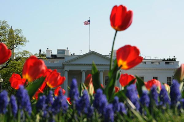 Лафайетт парк в Вашингтоне. Фото: JEWEL SAMAD/AFP/Getty Images