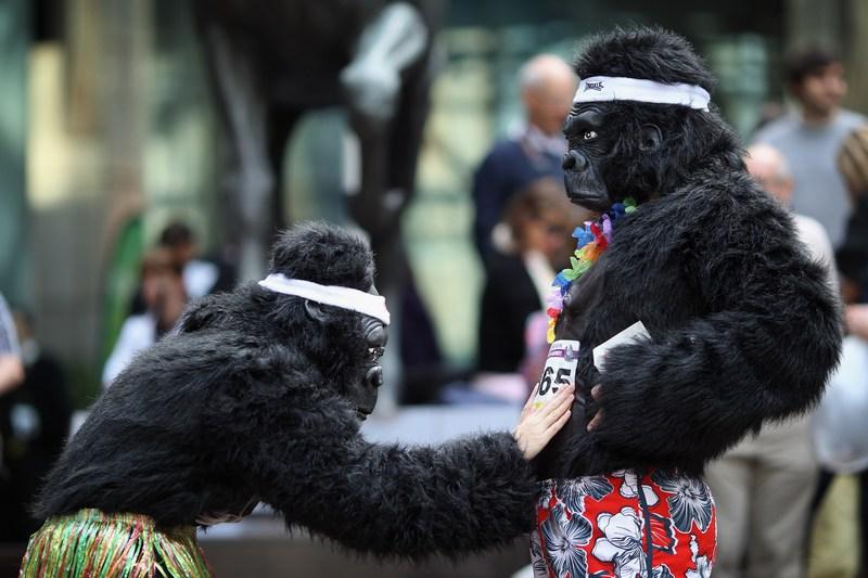 «Большой забег горилл» в Лондоне. Фото: Dan Kitwood/Getty Images