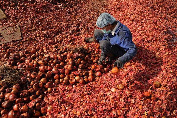 Робочий відбирає гранати на фабриці з виробництва соків в Кабулі, Афганістан. Фото: SHAH MARAI / AFP / Getty Images