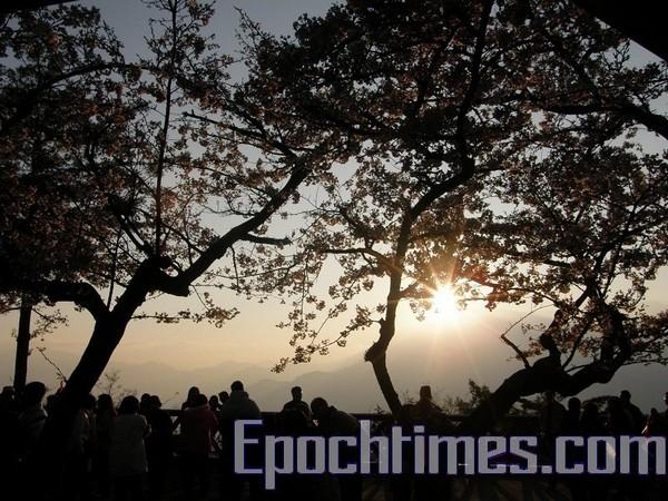 Гори Алішань. Фото: The Epoch Times