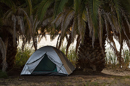 Ось так живописно виглядав табір під пальмою. Фото: Сергій Ханцис