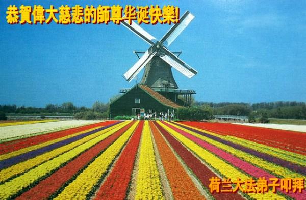 Поздравление от последователей Фалуньгун Голландии