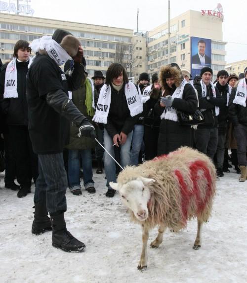 Кандидат в президенти Противсіх виганяв 'баранів із влади'. Фото:MIGnews.com.ua