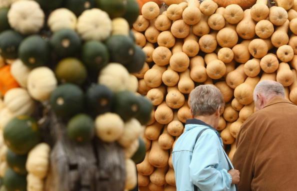Великі й маленькі, жовті й зелені, смугасті й пупирчасті, круглі й циліндричні - все це гарбузове різноманіття виставив германський фермер у своєму гарбузовому парку. Фото: Sean Gallup/Getty Images