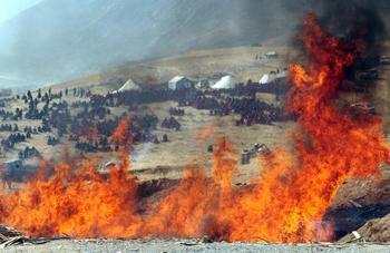Кількість загиблих від землетрусу китайська влада занижує в декілька раз.