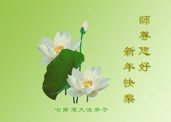 Вітальні листівки від послідовників Фалуньгун свого Учителя. Китайський новий рік. 14 лютого 2010 р. Фото з minghui.org