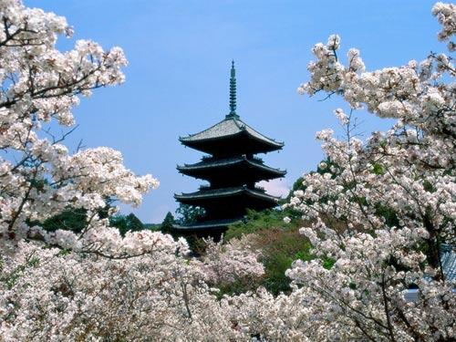 Храм Нинна Джи (Ninna-Ji) в Киото.