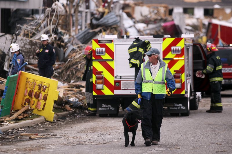 Сотрудник поисково-спасательного отряда с собакой. Фото: Mario Tama/Getty Images