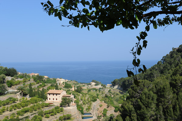 За переказами, Пальма-де-Майорка була заснована римським консулом Цецилієм Метеллом, який буквально закохався в цю землю, побачивши пагорб, що навис над морем. Фото: Sascha Baumann/Getty Images