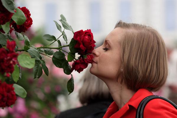 Лондон, Англия. Ежегодное шоу цветов 'Челси'. Фото: Dan Kitwood/Getty Images