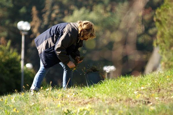 Новий цикл дивовижних сезонних змін у природі можна побачити в осінньому ботанічному саду в Києві. Фото: Володимир Бородін/Тhe Epoch Times