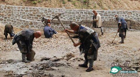 Ченці монастиря Дабей своєю працею забезпечують своє існування. Фото: з сайту epochtimes.com