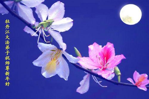 Поздравление от последователей «Фалуньгун» из Муданцзяня. Фото с minghui.org