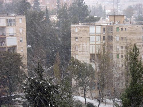 Снег падал, довольно, обильный. Высота снежного покрова к утру достигала около 10-15 см., что для города является существенным. Фото: Анна Галеткин/Великая Эпоха