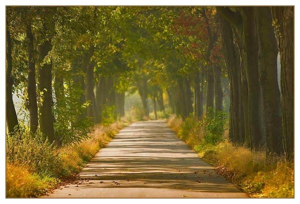 Миттєвості та вічність. Фото з aboluowang.com