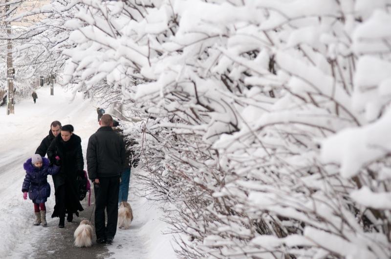 Киев превратился в зимнюю сказку. Фото: Владимир Бородин/The Epoch Times Украина