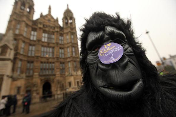 Чоловік, переодягнений у костюм горили, протестує біля будівлі парламенту проти можливого продажу «Кадбері Шуеппс», великої компанії з виробництва кондитерських виробів, фруктових напоїв і консервів, дочірнього підприємства американської компанії «Крафт».