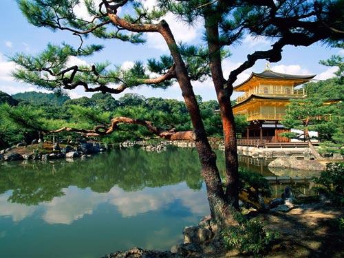 Храм Kinkaku-ji в Киото, Япония.