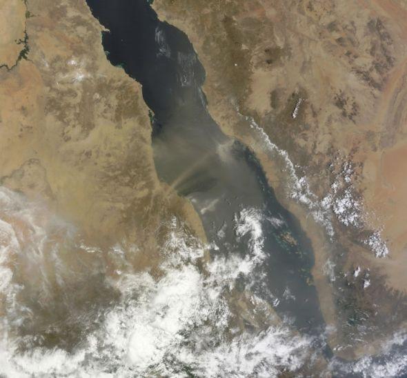 Пыльная буря, которая поднялась у берегов Судана и перемещается через Красное море. Снимок сделан в естественных цветах со спутника НАСА Терра 3 августа. (NASA)