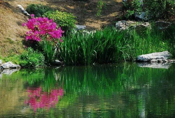 Горы Лушань – обитель небожителей. Фото с secretchina.com